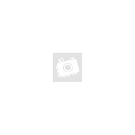 FL Studio Szoftverelmélet és zenefelépítés